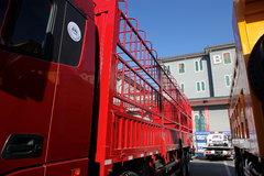 欧曼GTL载货车外观                                                图片