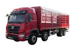 徐工 T系重卡 300马力 8X4 9.5米仓栅载货车(NXG5310CCYK4) 卡车图片