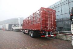 中国重汽 豪瀚J5G重卡 280马力 8X2 9.5米仓栅式载货车(ZZ5315CCYN46G3E1) 卡车图片