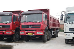 红岩 新大康重卡 290马力 8X4 8.5米自卸车(CQ3304TMG366) 卡车图片