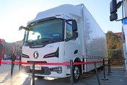 陕汽重卡 德龙L6000 4X2 9米电动载货车
