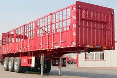 大运 13米平板花栏对开半锁杆仓栅式半挂车
