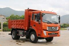时骏 D750 165马力 4X2 4.2米自卸车(LFJ3120SCG2)