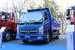 凯马 GK8福运来 130马力 3.95米自卸车(KMC3042GC28D5)图片