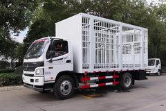 福田 欧马可3系 154马力 畜禽运输车(程力威牌)(CLW5121CCQ5) 卡车图片