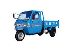 福田雷沃 五星 猎手-II 全封闭 栏板式 三轮低速货车