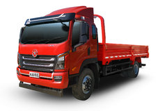 大运 祥龙 220马力 5.2米排半栏板轻卡(CGC1180HDF44E) 卡车图片
