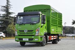 东风新疆 畅行D1 160马力 4X2 4.2米单排仓栅式载货车(DFV5110CCYGD5D) 卡车图片