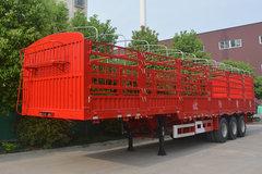 欧阳聚德13米系列仓栅式半挂车图片