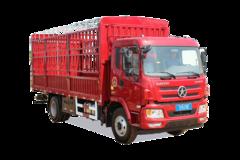 大运重卡大运N6载货车图片