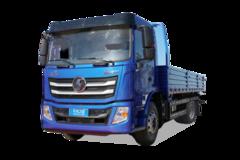 陕汽轻卡德龙N3000载货车图片