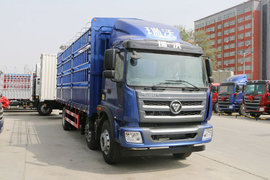 瑞沃Q9载货车图片