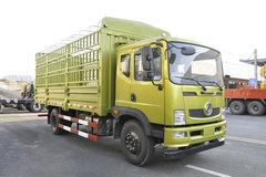 东风神宇T5载货车图片